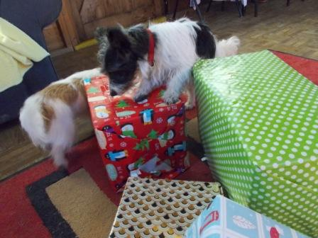 Christmas Box Fun 029